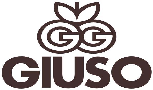 GIUSO Eisrohstoffe Grosshandel Berlin